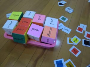 色カード文字付とサイコロ